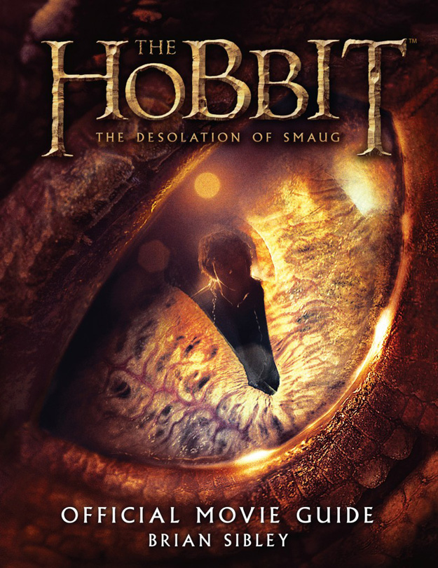 The Hobbit The Desolation of Smaug-Official Poster Banner PROMO BOOKS-19AGOSTO2013-01