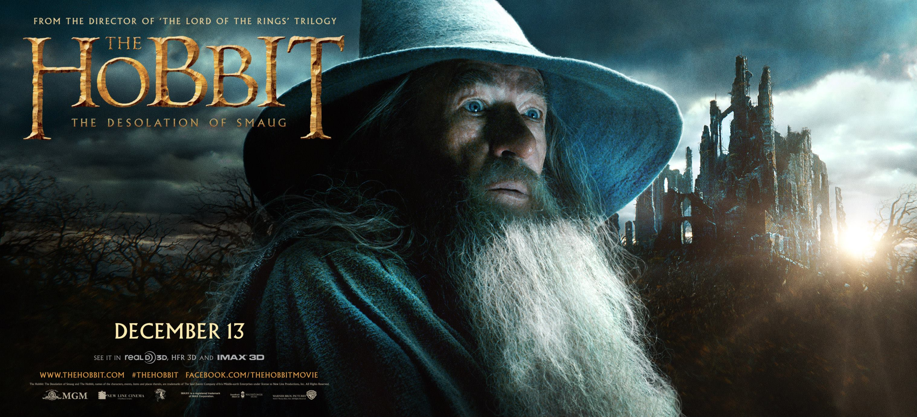 THE HOBBIT THE DESOLATION OF SMAUG-Official Poster Banner PROMO BANNER-30SETEMBRO2013-03