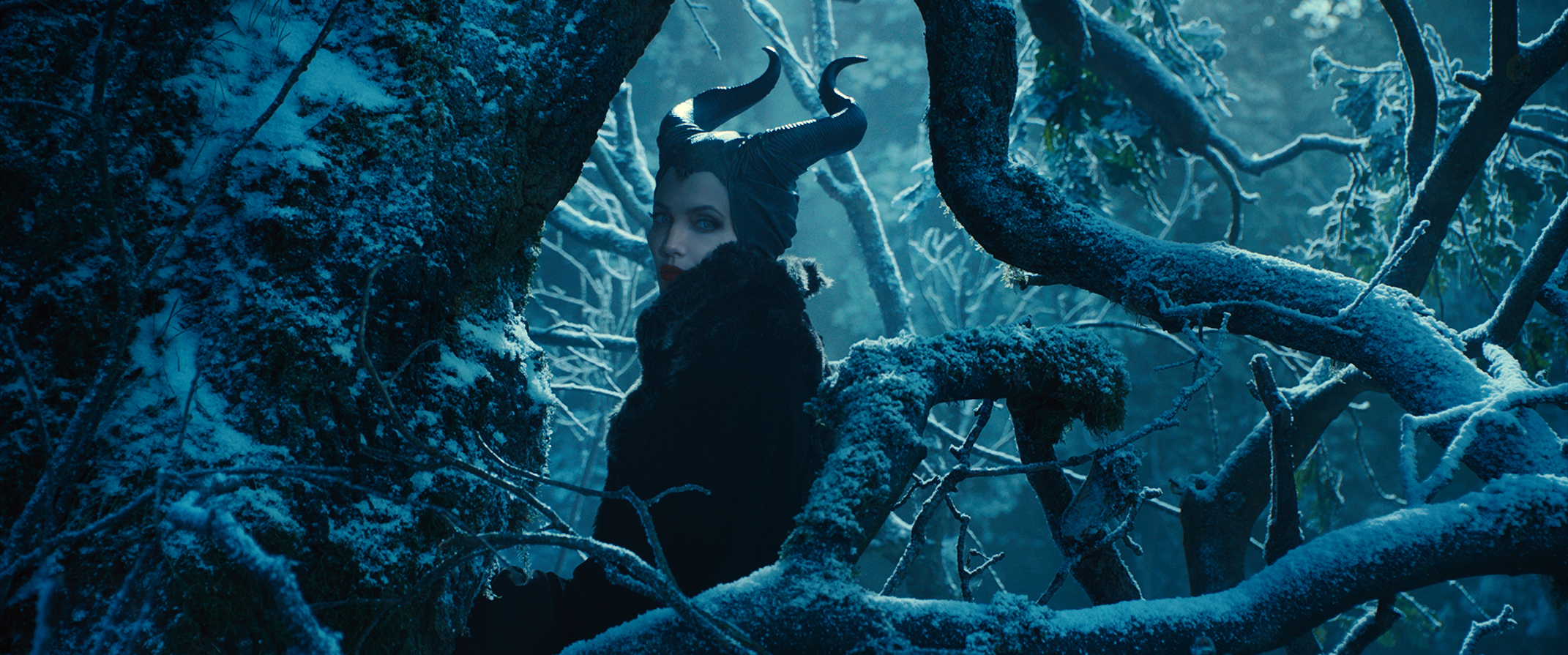 Maleficent-Official Poster Banner PROMO PHOTOS-14NOVEMBRO2013-01