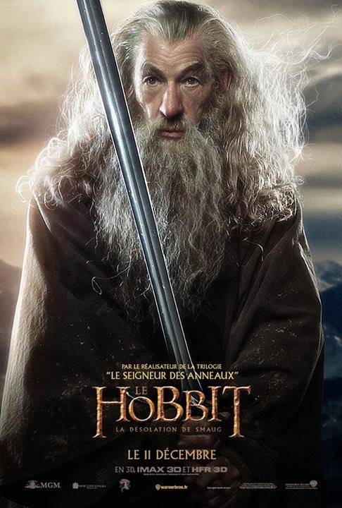 THE HOBBIT THE DESOLATION OF SMAUG-Official Poster Banner PROMO INTERNATIONAL-07NOVEMBRO2013-02