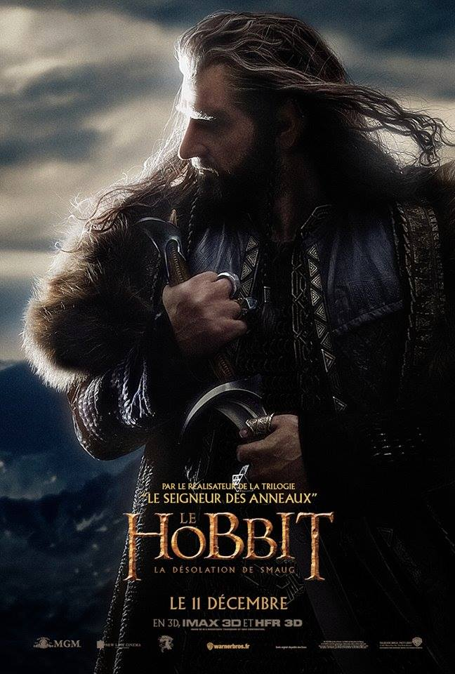 THE HOBBIT THE DESOLATION OF SMAUG-Official Poster Banner PROMO INTERNATIONAL-07NOVEMBRO2013-04