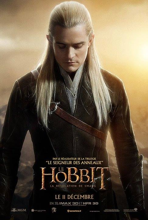 THE HOBBIT THE DESOLATION OF SMAUG-Official Poster Banner PROMO INTERNATIONAL-07NOVEMBRO2013-05