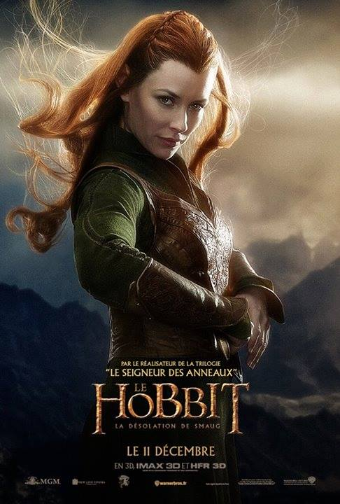 THE HOBBIT THE DESOLATION OF SMAUG-Official Poster Banner PROMO INTERNATIONAL-07NOVEMBRO2013-06