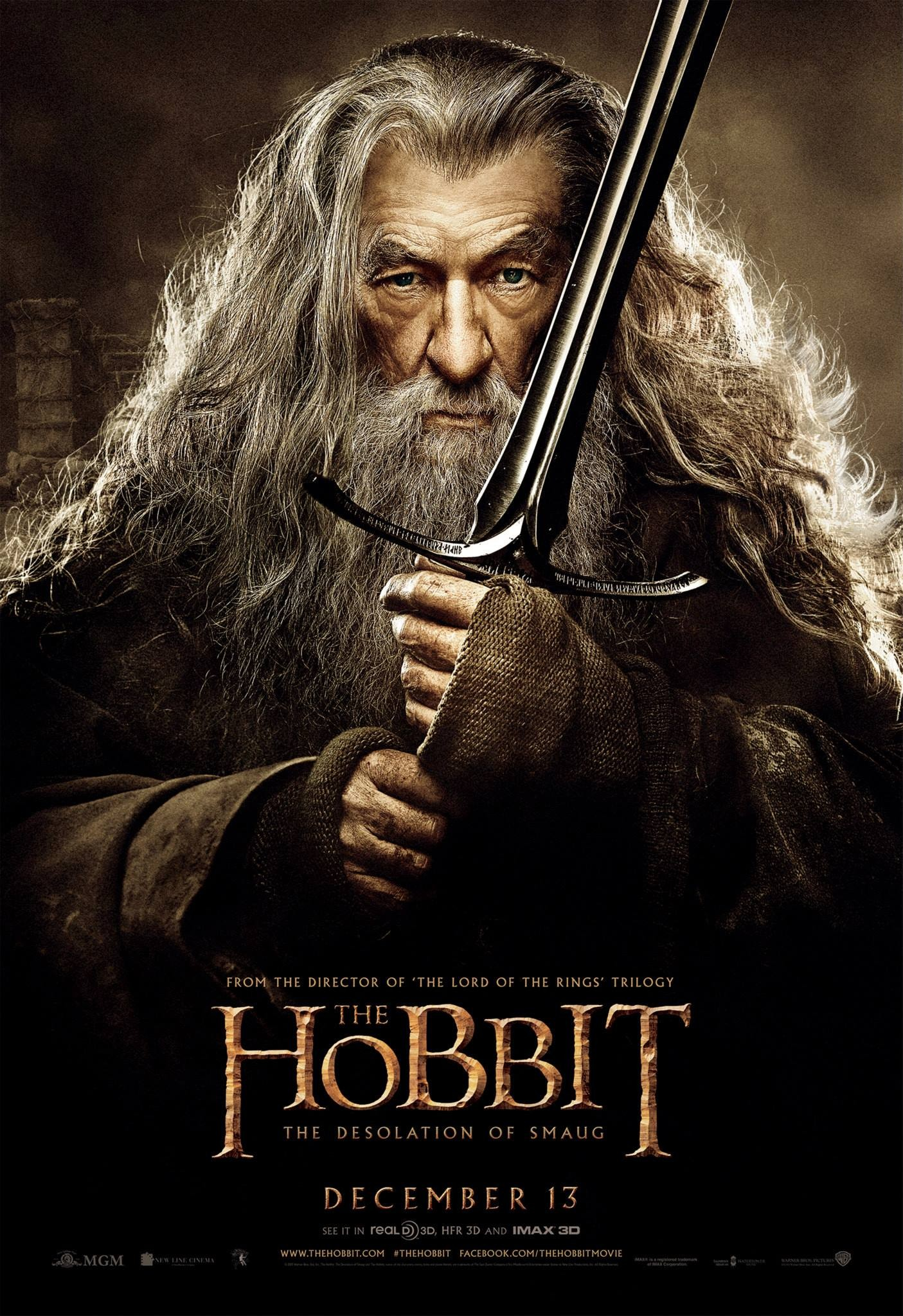 The Hobbit The Desolation of Smaug-Official Poster Banner PROMO POSTER XXLG-04NOVEMBRO2013-03