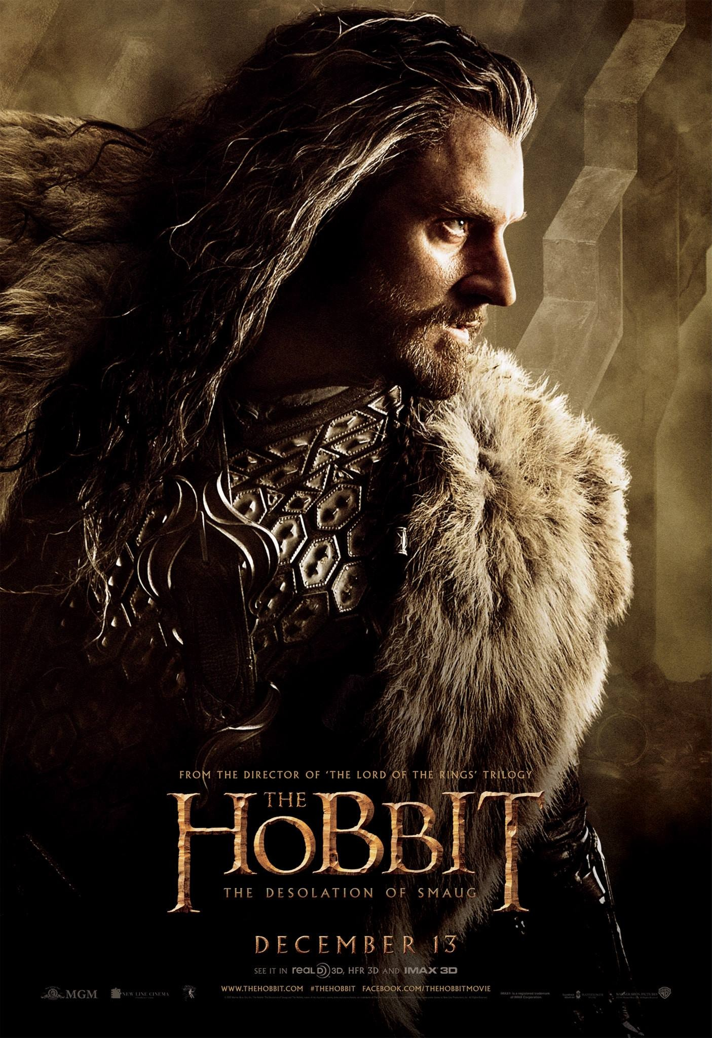 The Hobbit The Desolation of Smaug-Official Poster Banner PROMO POSTER XXLG-04NOVEMBRO2013-05