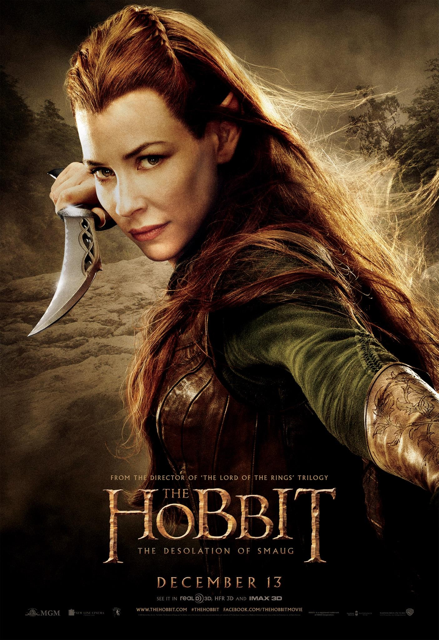 The Hobbit The Desolation of Smaug-Official Poster Banner PROMO POSTER XXLG-04NOVEMBRO2013-06