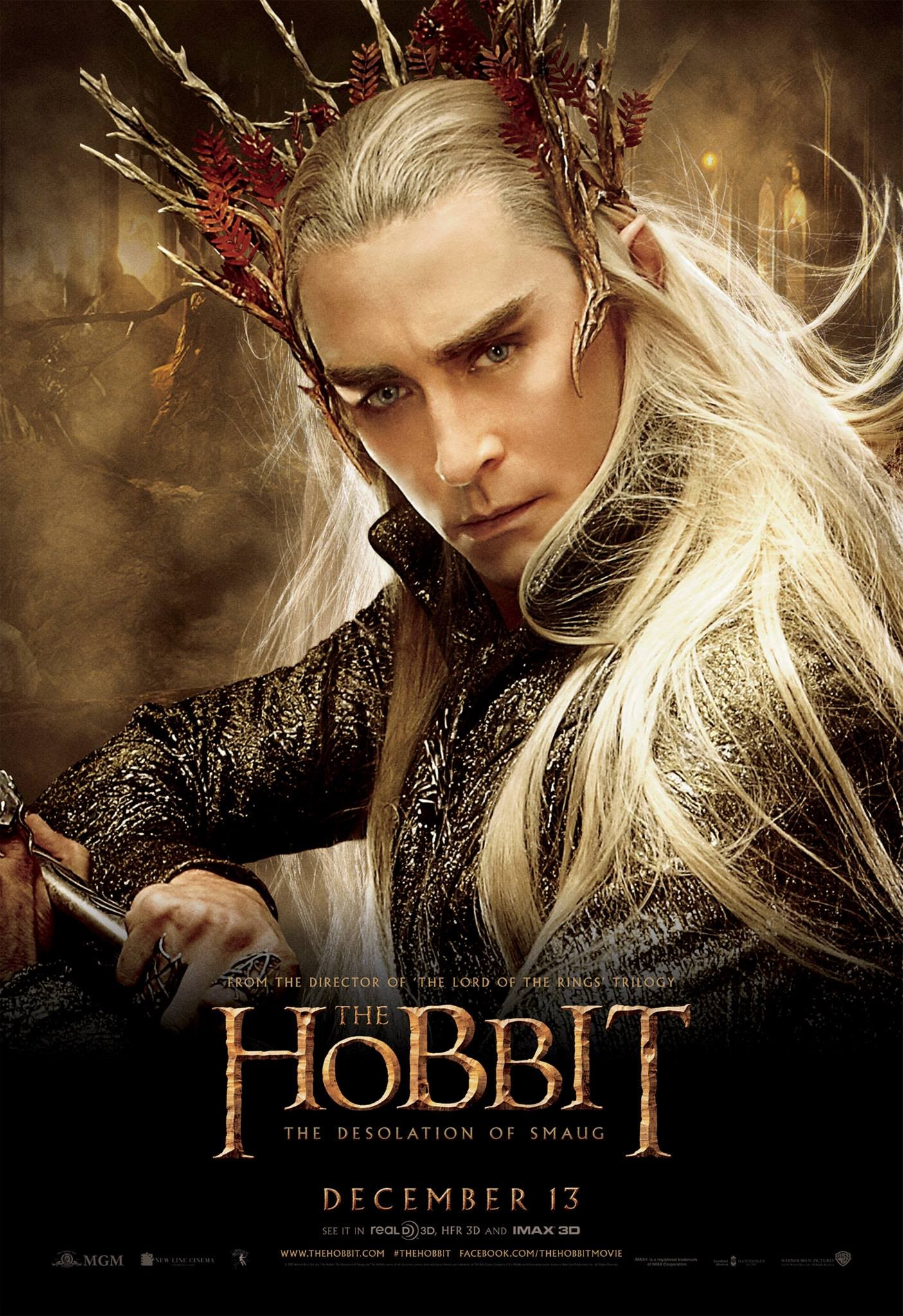 The Hobbit The Desolation of Smaug-Official Poster Banner PROMO POSTER XXLG-04NOVEMBRO2013-07