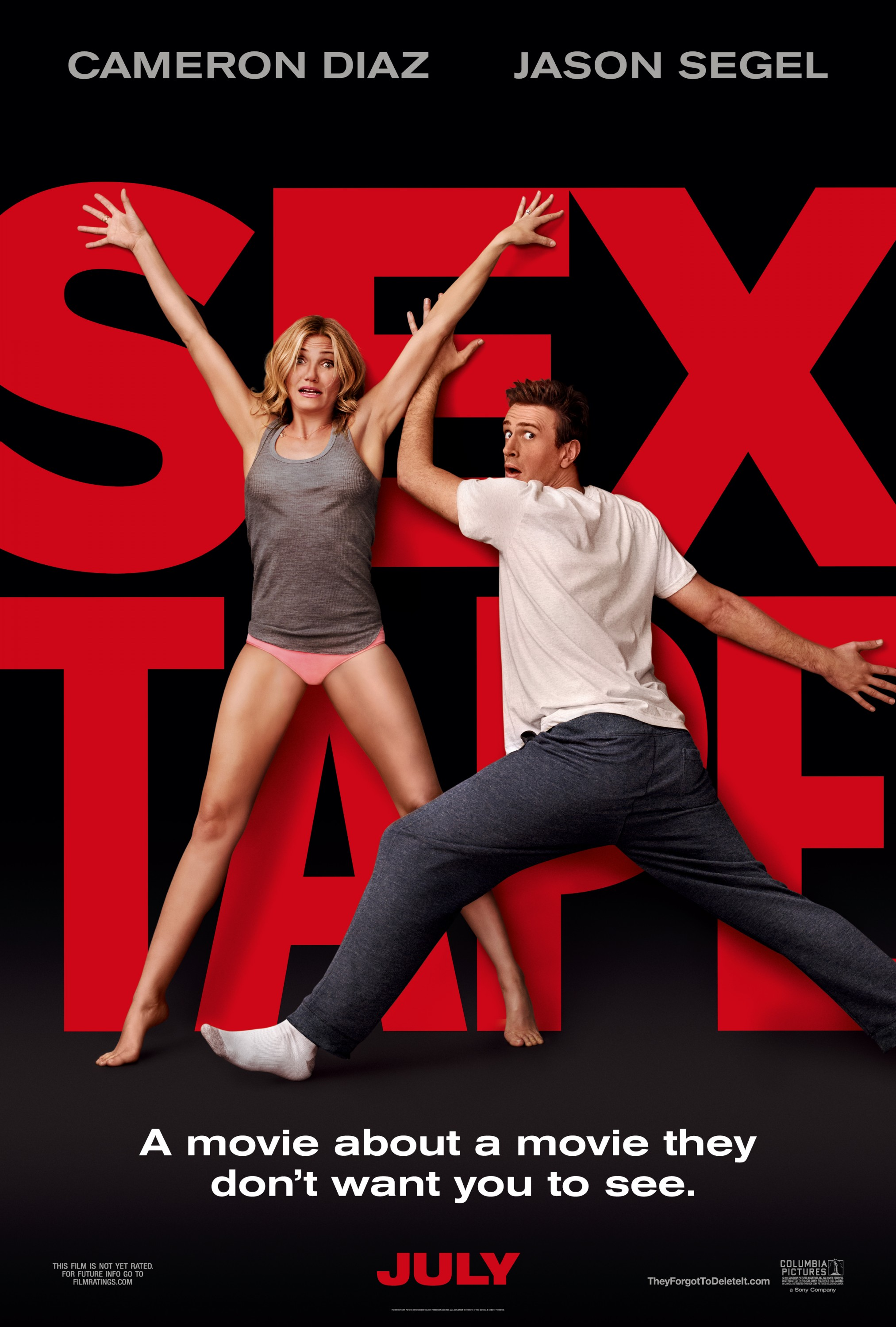 Sex Tape-Official Poster Banner PROMO XXLG-18MARCO2014