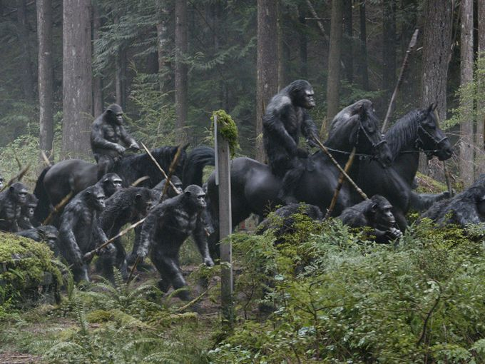 Dawn of the Planet of the Apes-Official Poster Banner PROMO-09ABRIL2014-09