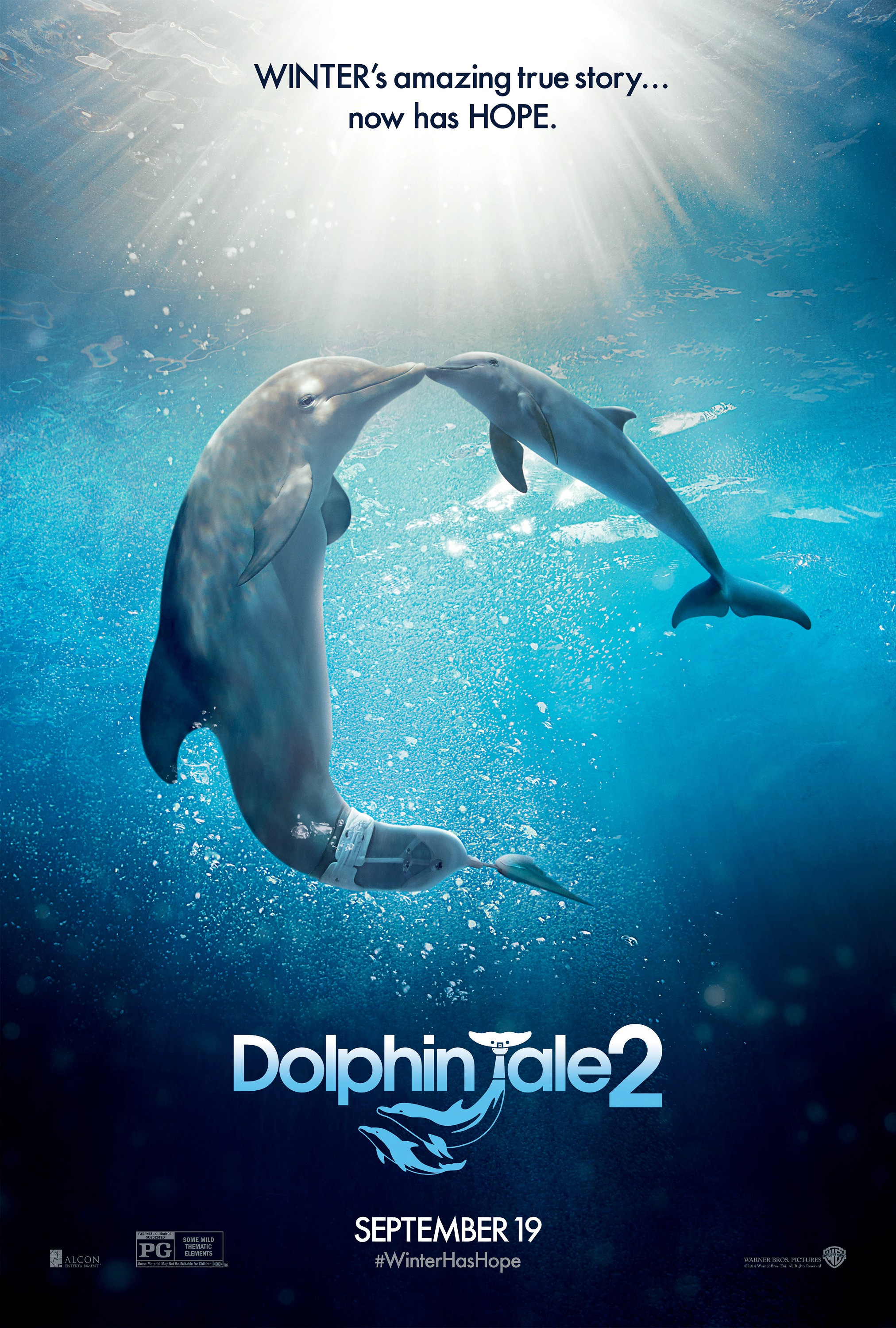 Dolphin Tale 2-Offcial Poster Banner PROMO XXLG-30MAIO2014