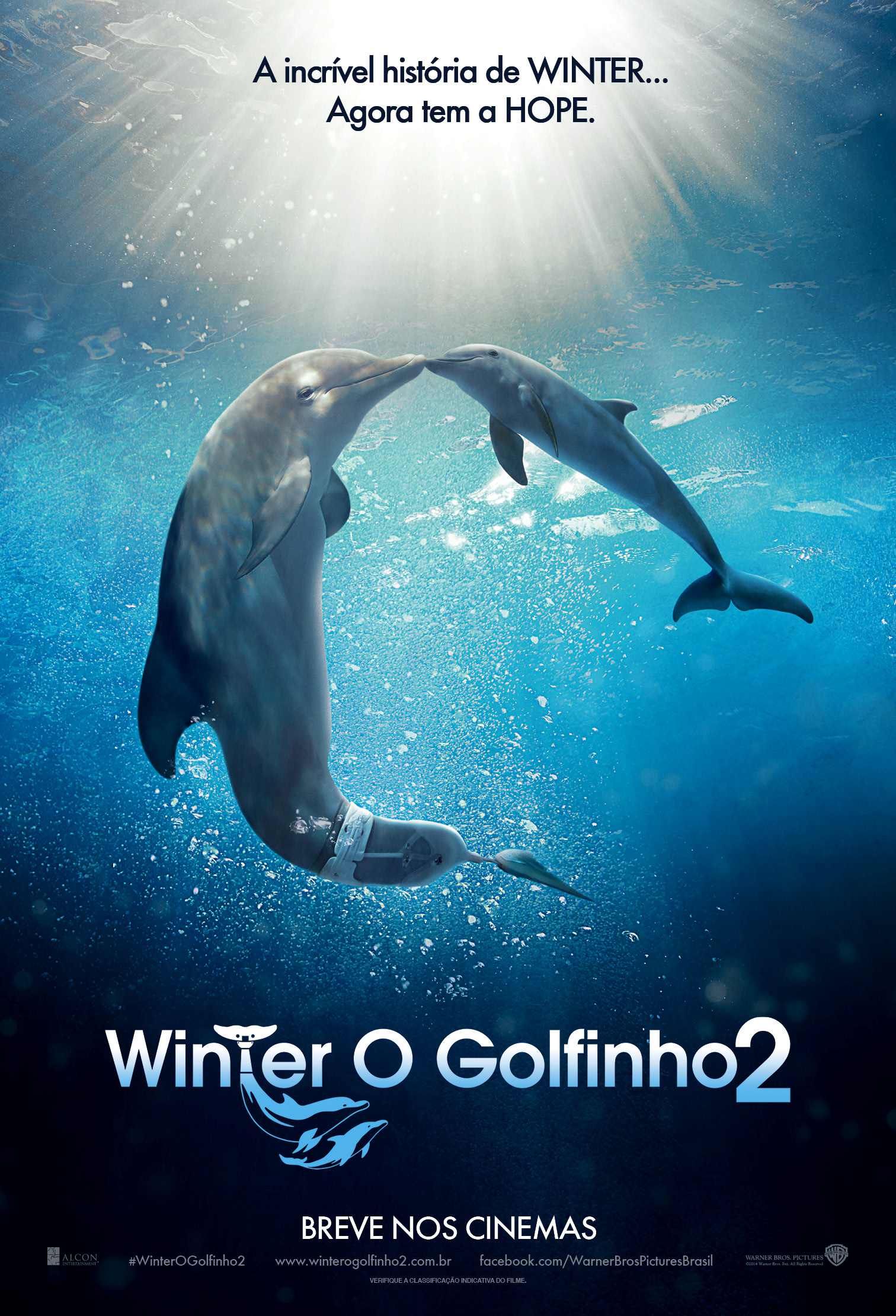DOLPHIN TALE 2-Official Poster Banner NACIONAL-07JULHO2014