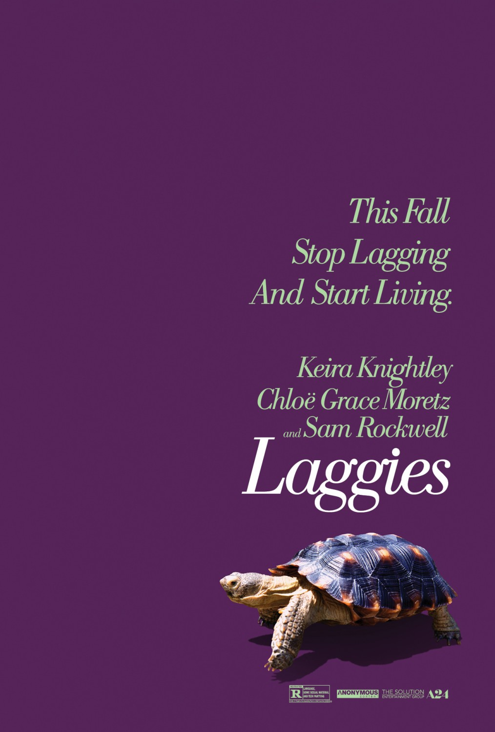 Laggies-Official Poster Banner PROMO XLG-17JULHO2014