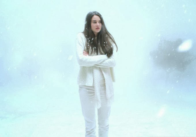 WHITE BIRD IN A BLIZZARD-Official Poster Banner PROMO PHOTOS-16DEZEMBRO2013-01