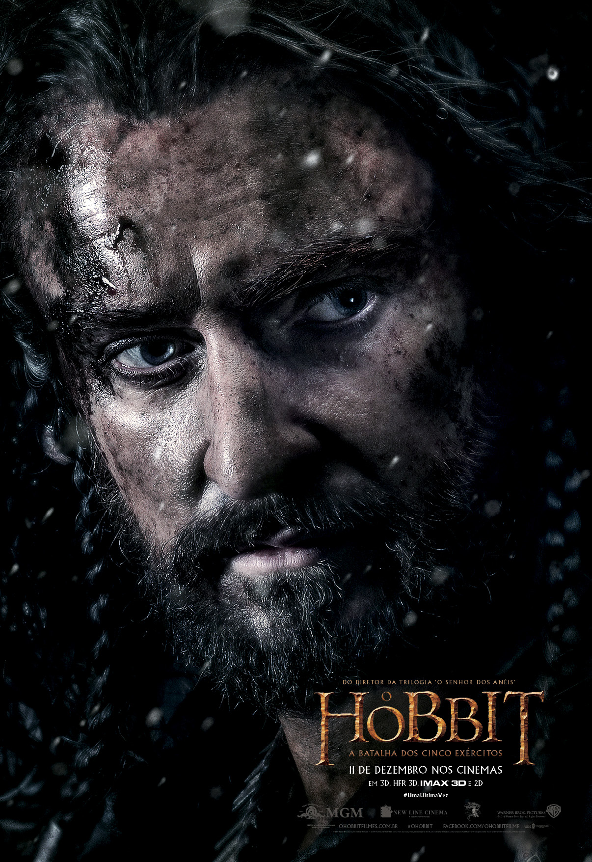 309732id5_TheHobbit_TBOTFA_Character_Thorin_48inW_x_70inH