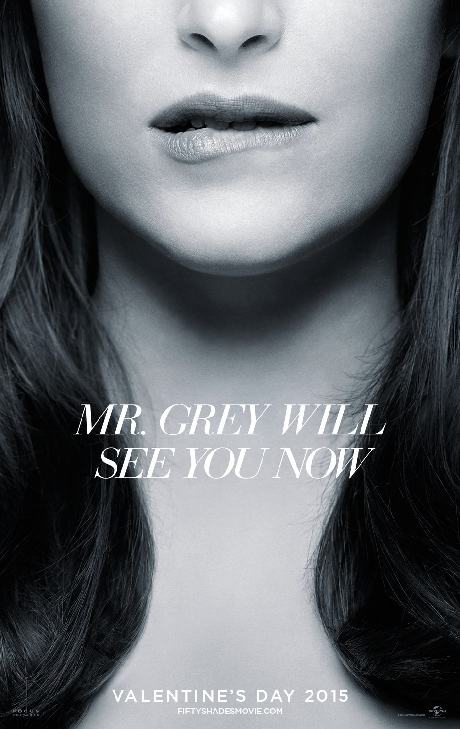 Fifty Shades of Grey-Official Poster Banner XXLG-14NOVEMBRO2014-02