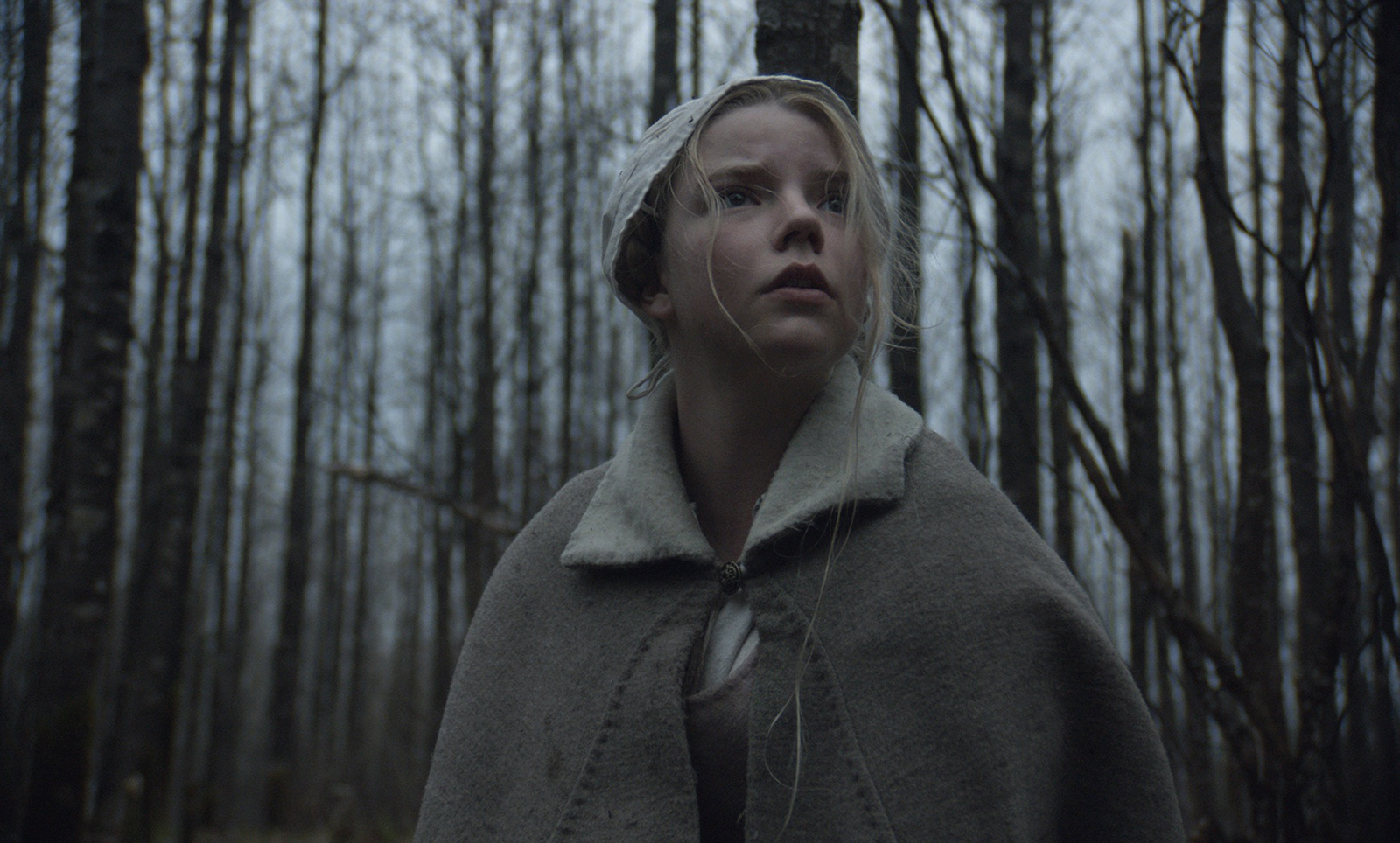 The Witch-20Agosto2015 (2)