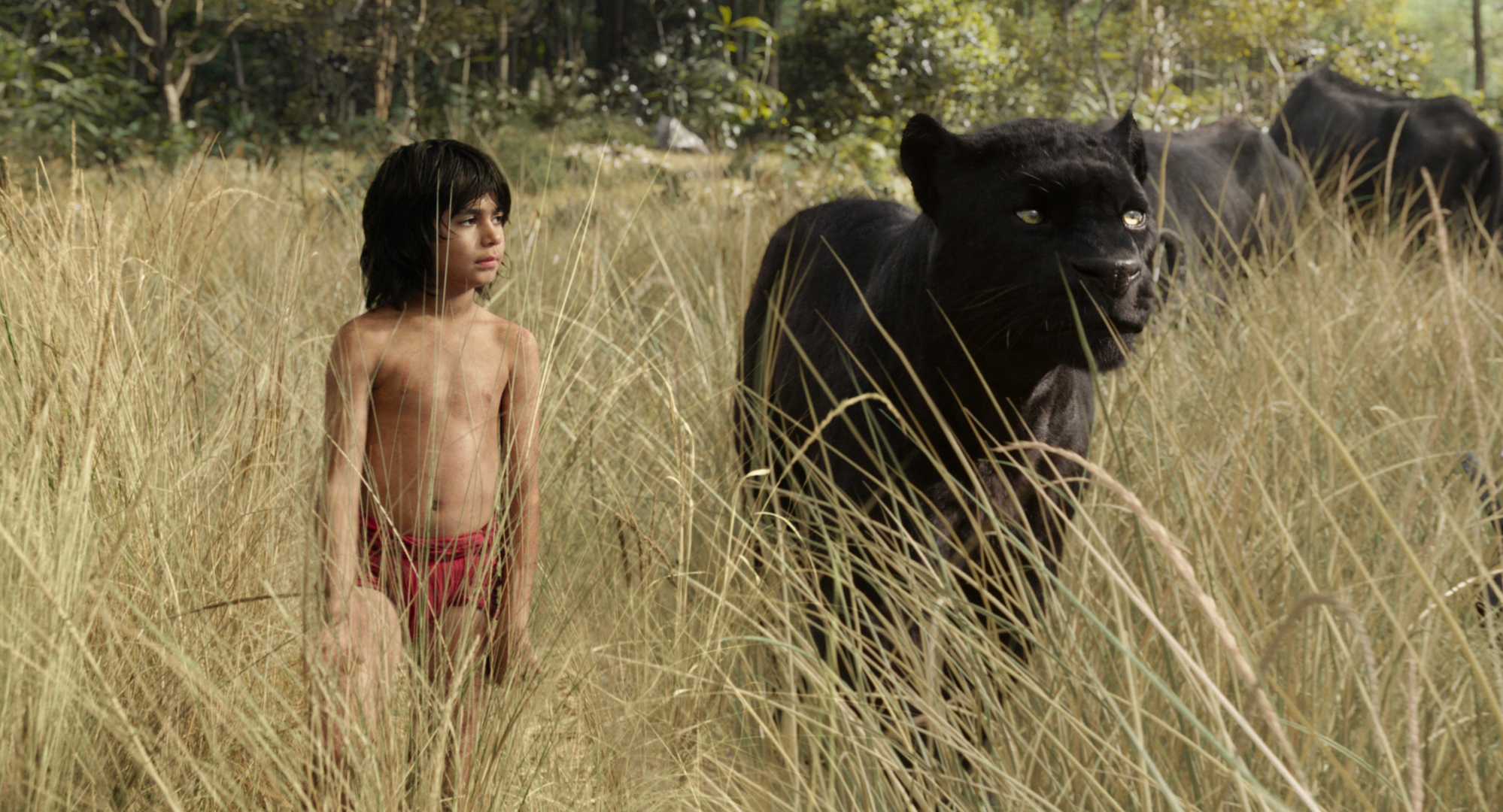 The-Jungle-Book-15Setembro2015-1