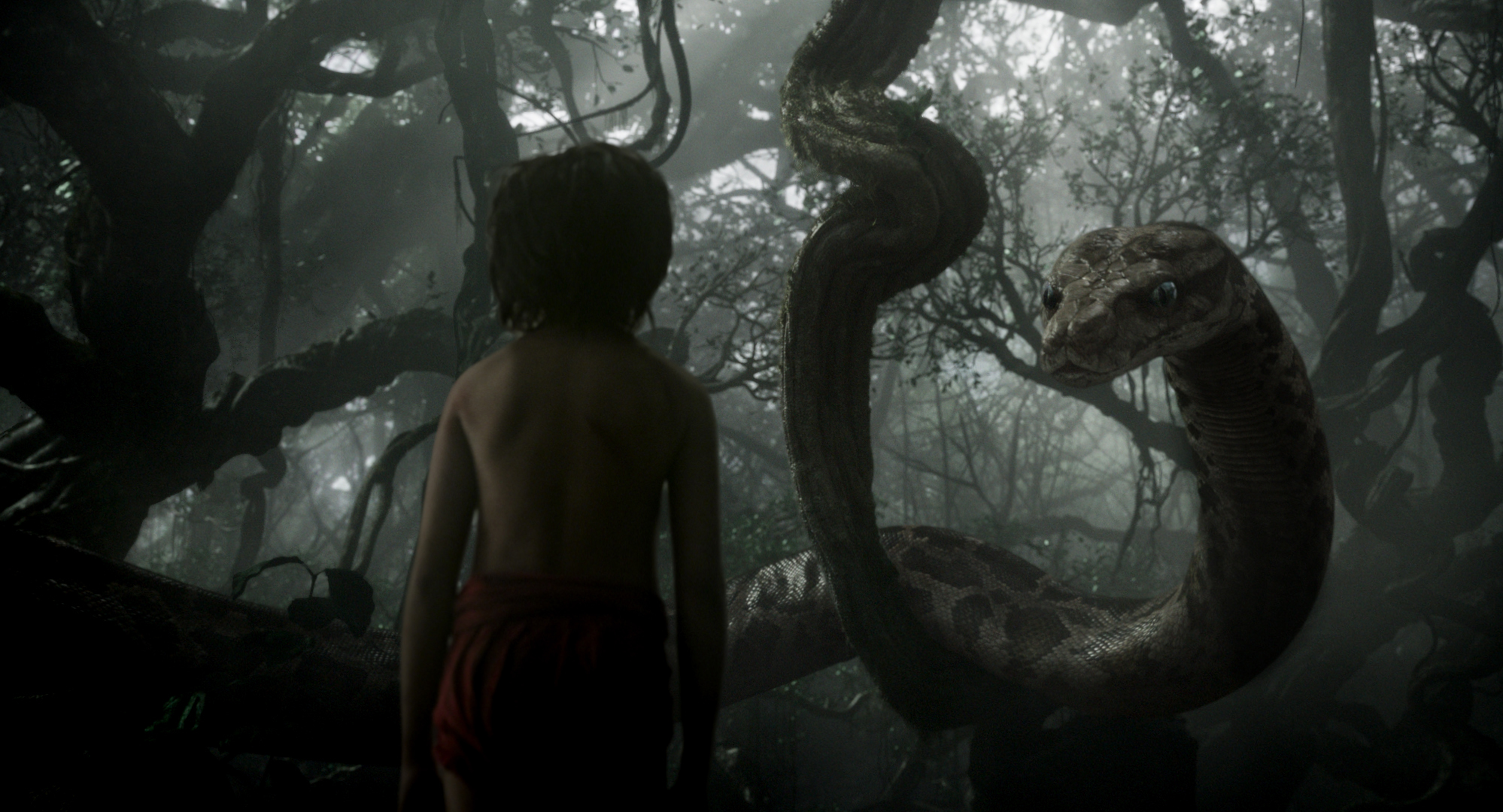 The-Jungle-Book-15Setembro2015-2