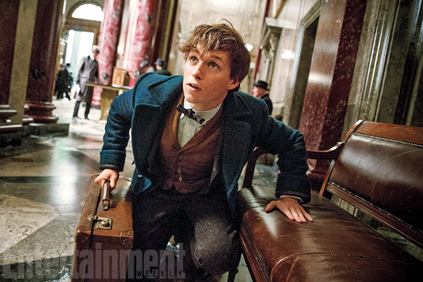 Fantastic Beasts and Where to Find Them-EW (2)