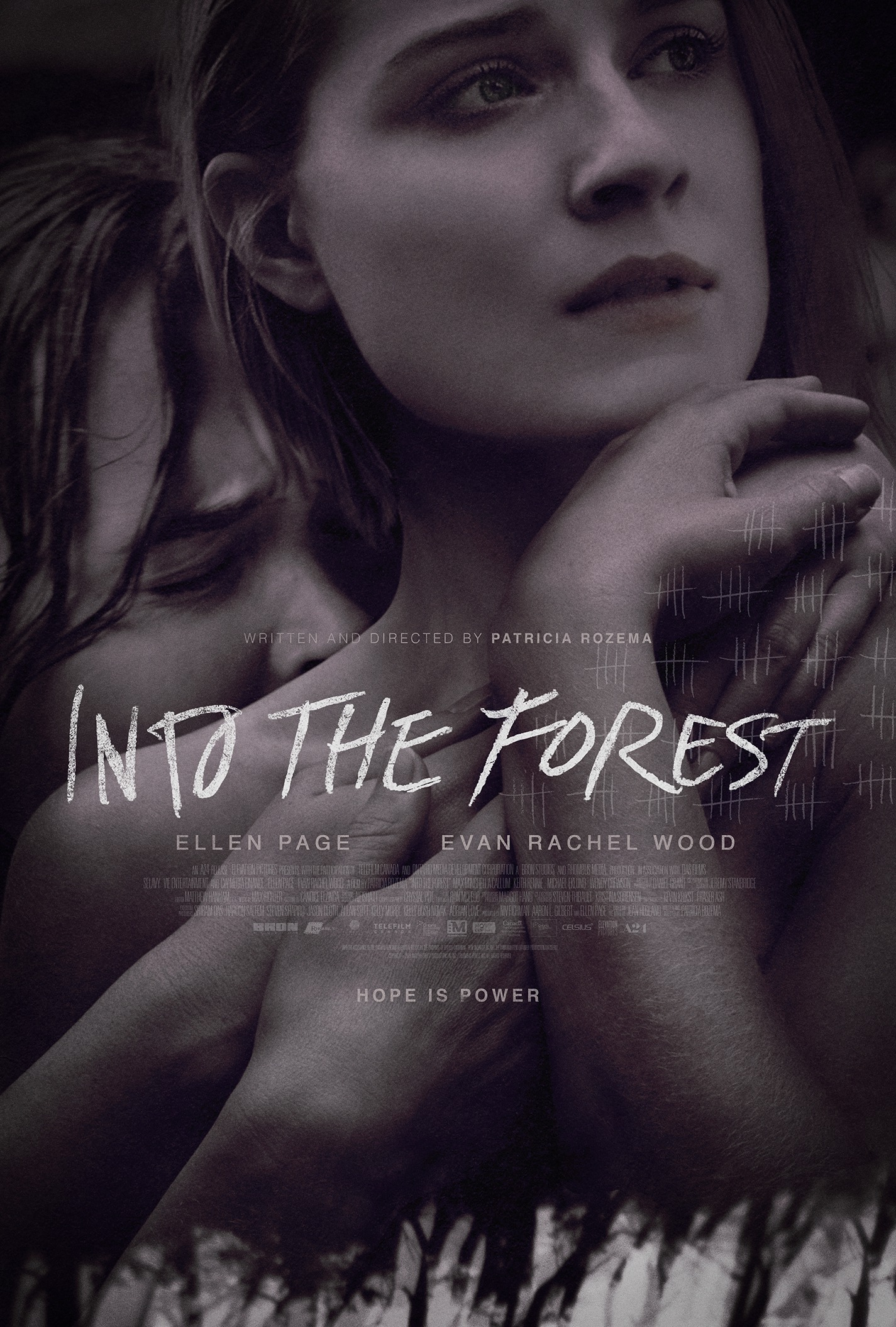 Into the Forest-12Maio2016 (3)